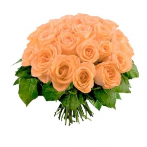 Boquet rose arancio