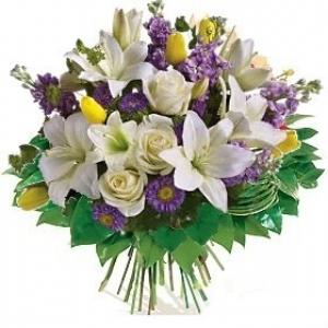 Aliflora Special