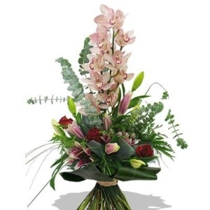 Aliflora orchidee rosa