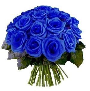 Bouquet blue roses