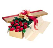 36 red roses in box